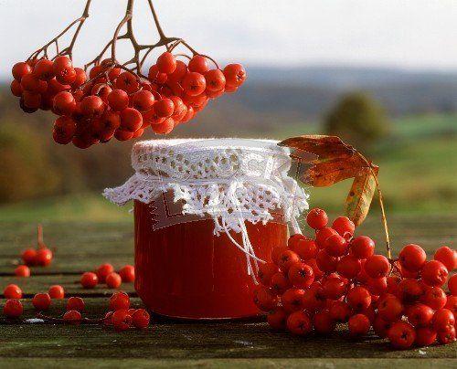 Сок из плодов рябины красной