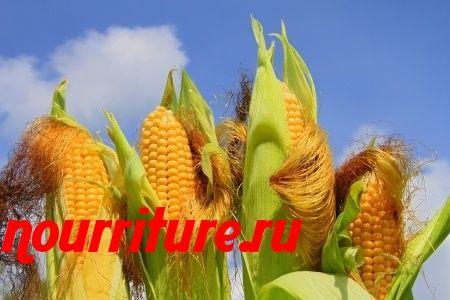 Отвар кукурузных рылец при отёках