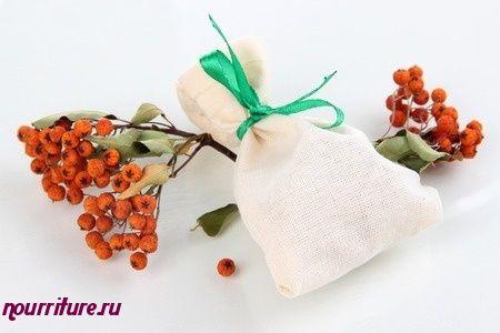 Настой сушёных плодов рябины при истощении и малокровии