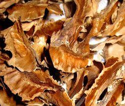 Настой перегородок грецкого ореха при хроническом поносе