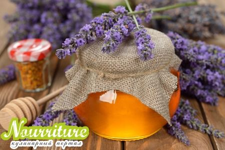 Лавандовый мёд: свойства лавандового мёда