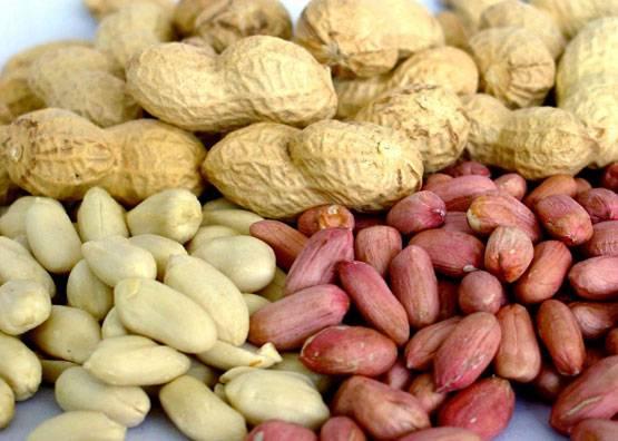 Арахис: полезные свойства арахиса и вред арахиса