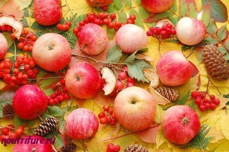 Повидло рябиново-яблочное