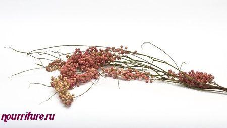 Перец розовый (перуанский)
