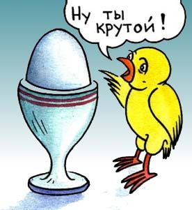 Что такое КРУТИЗНА? Иронический стих о яйцах