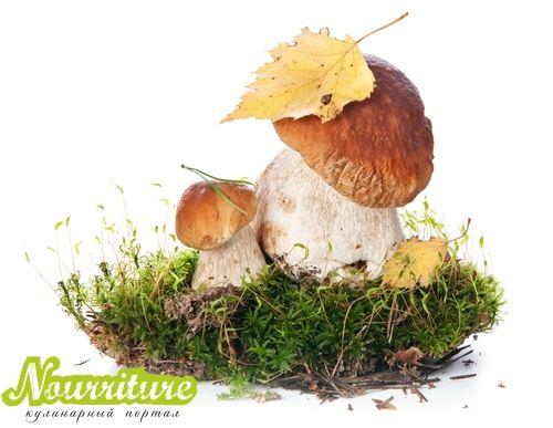 Бисквит с грибами