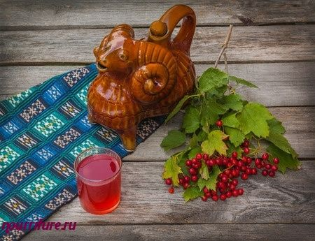 Горячий сок калины при простуде, нарушениях пищеварения, переедании и заболеваниях печени
