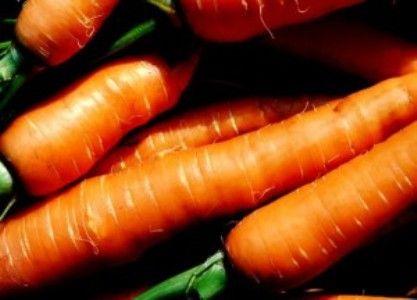"Морковь сорта ""алтаир"""