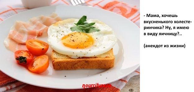 Куриные яйца и холестерин, или Пусть всегда будет яичница!