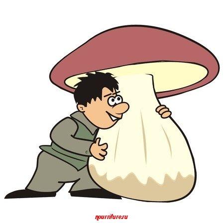 Пословицы и поговорки о грибах