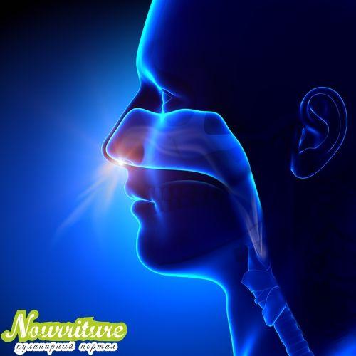 Опухоли полости носа и околоносовых пазух