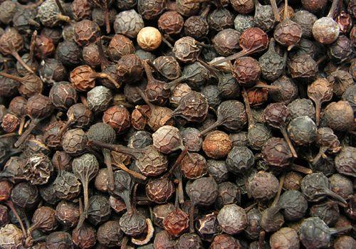 Перец кубеба (яванский перец, кумукус, рину)