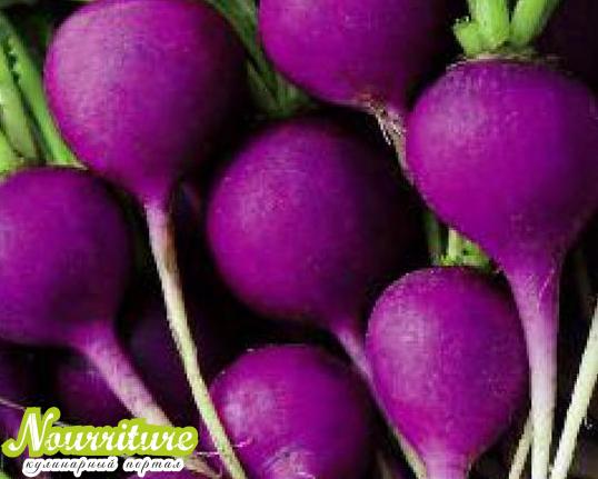 """Редиска сорта """"фиолет"""""""