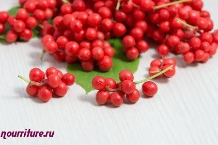 Настой сушёных или свежих ягод лимонника китайского