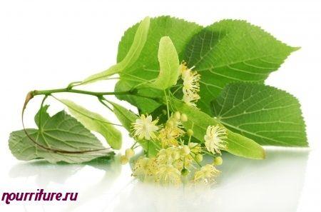 Напиток из плодов малины и липового цвета при кашле и простуде