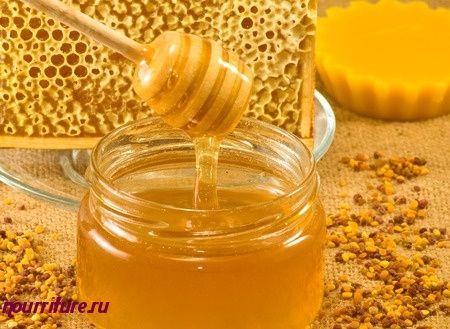 Отвар репчатого лука с сахаром и мёдом при кашле и бронхите