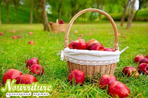 Пословицы о Яблочном Спасе и приметы на Яблочный Спас