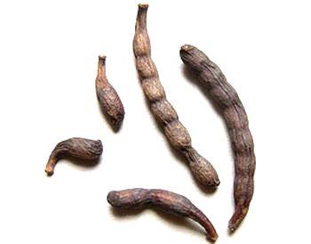 Перец африканский (гвинейский перец, ашангийский перец, западноафриканский перец, перец леклюза, пиментода рабо)