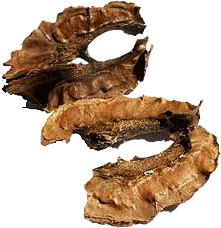 Отвар перегородок грецких орехов при болях в сердце