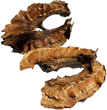 отвар из перегородок грецкого ореха на воде