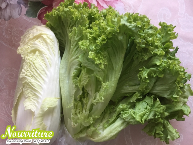 """Заметка №646: """"Как хранить листовой салат?"""""""