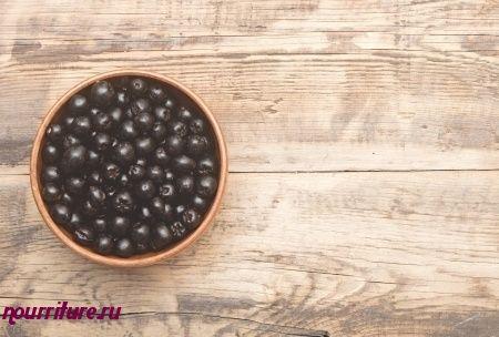 Сок черноплодной рябины при гипертонии, геморрое и гипоацидном гастрите