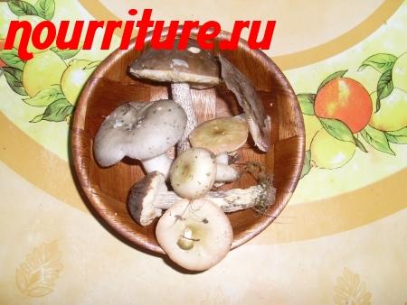 Обработка белых грибов, шампиньонов, сыроежек, подосиновиков, опят, моховиков и подберёзовиков и лисичек
