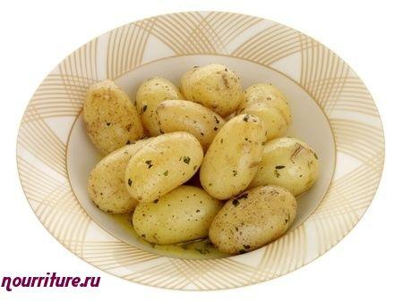 """Картофель сорта """"винета"""" (немецкая селекция)"""
