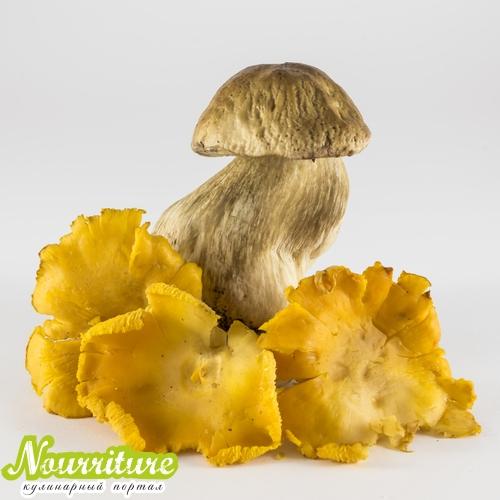 Грибное жаркое из лисичек и белых грибов (по-австрийски)