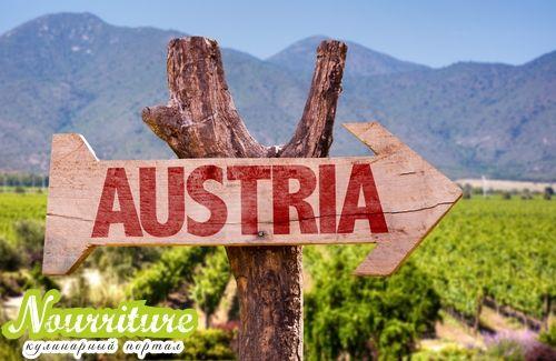 Австрийская национальная кухня: кухня Штирии Кухни народов мира