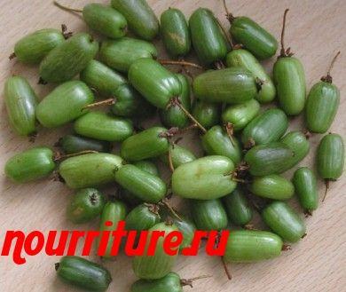 Протёртые ягоды актинидии
