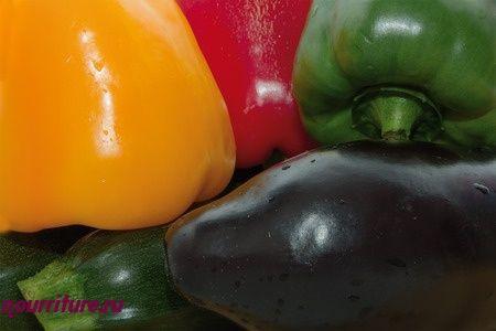 Пряные маринованные овощи (при заболеваниях сердца)