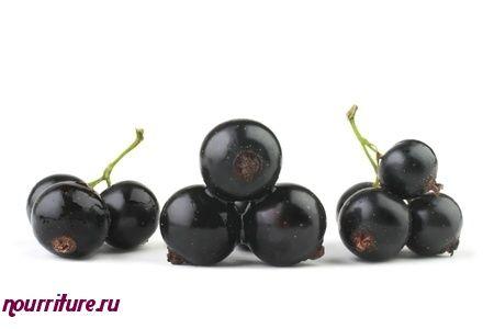 Рябина черноплодная с чёрной смородиной при астении