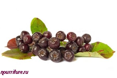 Ягоды черноплодной рябины, протёртые с сахаром