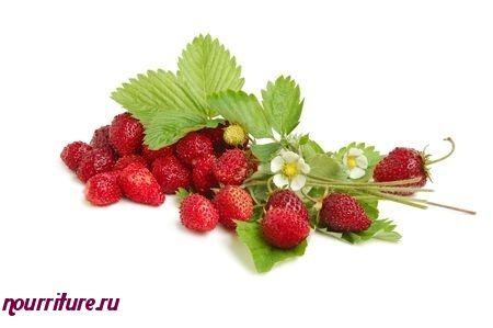 Настой сушёных ягод земляники при гипертонической болезни, болях в сердце, атеросклерозе, гастрите, колите