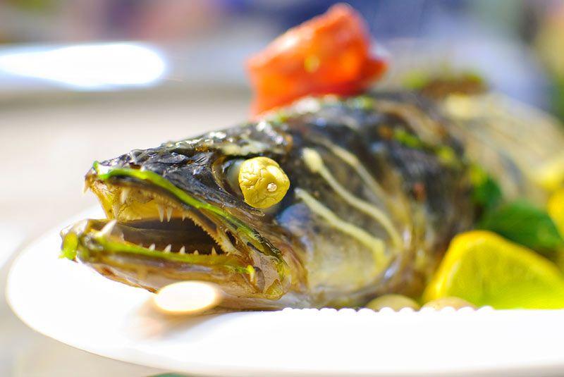 Отварные судак, сом, сазан, щука, чехонь или карась с картофелем и шпиком