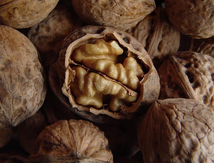 Молочный настой перегородок грецкого ореха при язве двенадцатиперстной кишки