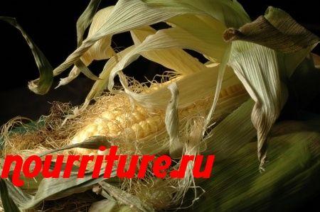Отвар кукурузных рылец при заболеваниях почек и печени