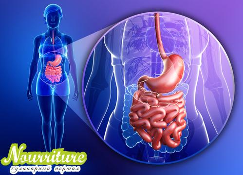 Энтеропатия экссудативная гипопротеинемическая (кишечная лимфангиэктазия, болезнь Гордона)