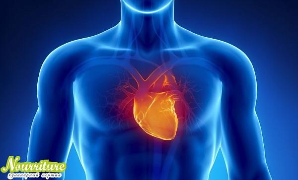 Рецепты и продукты при заболеваниях сердечно-сосудистой системы
